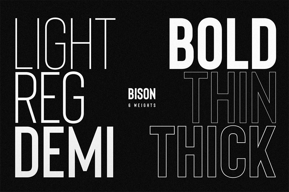 Bison Bold