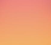 UI Color Palette