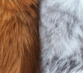 Fur Images