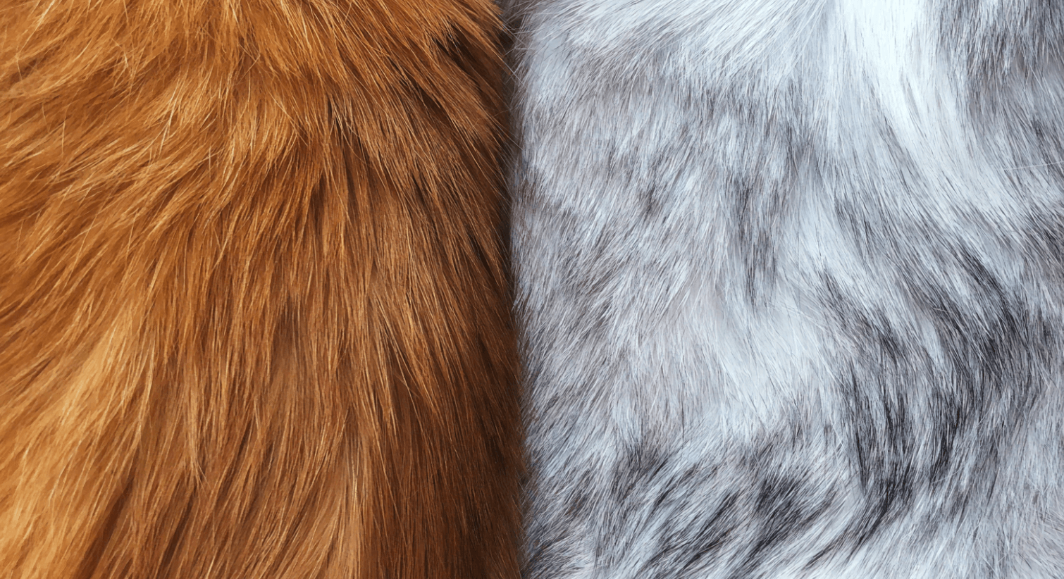 Fur Photoshop Brushes