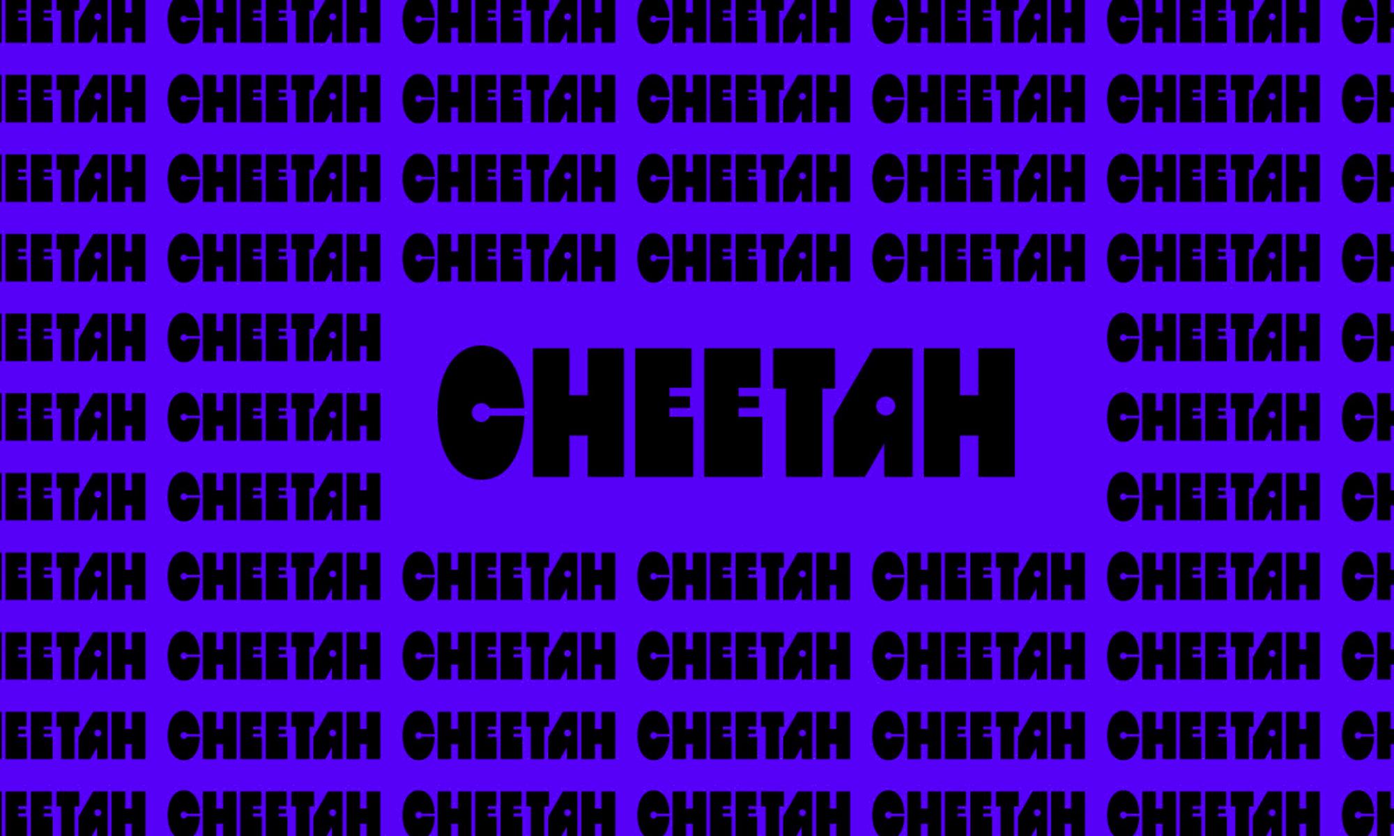 Salsa BT Typeface