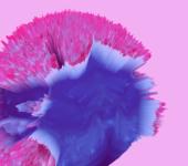 3-d pink blob